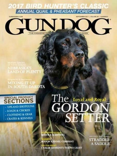 Download Gun Dog — September 2017