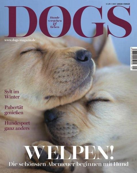 Download dogs — Januar 01, 2017