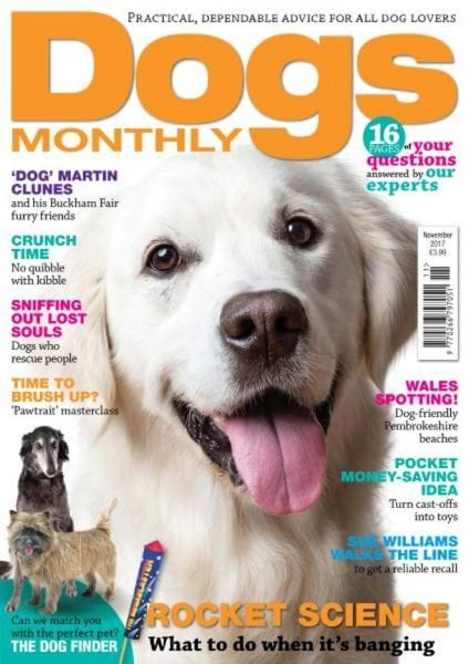 Download Dogs Monthly — November 2017