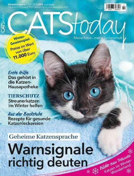 Download Cats Today — Dezember 2017