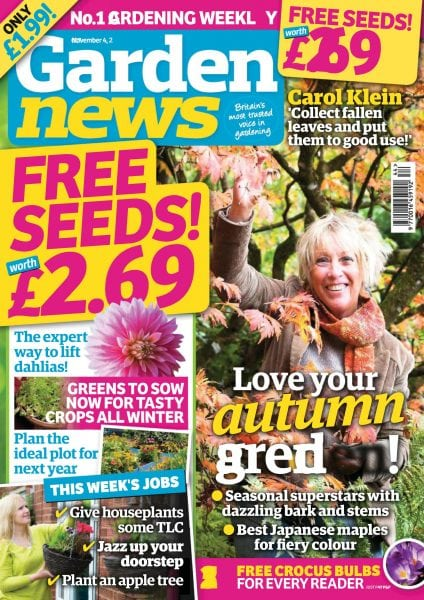 Download Garden News — November 04, 2017