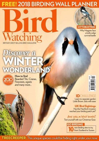 Download Bird Watching UK — December 2017