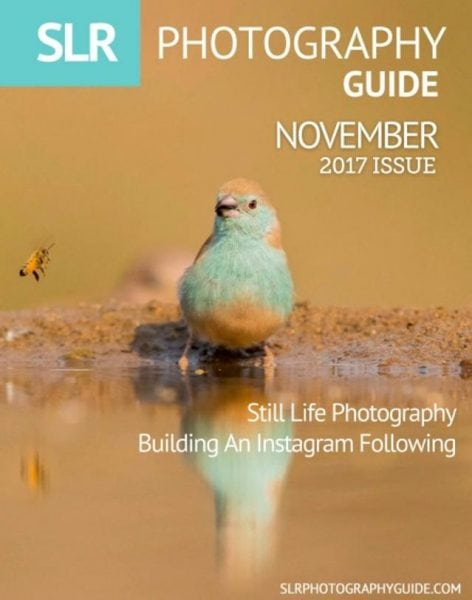 Download SLR Photography Guide — November 2017