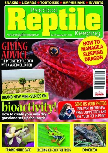 Download Practical Reptile Keeping — November 2017