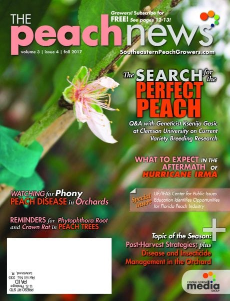 Download The Peach News — November 2017