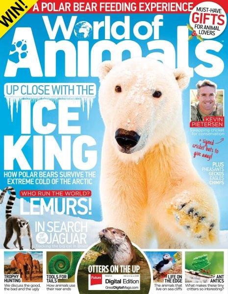 Download World of Animals UK — December 2017
