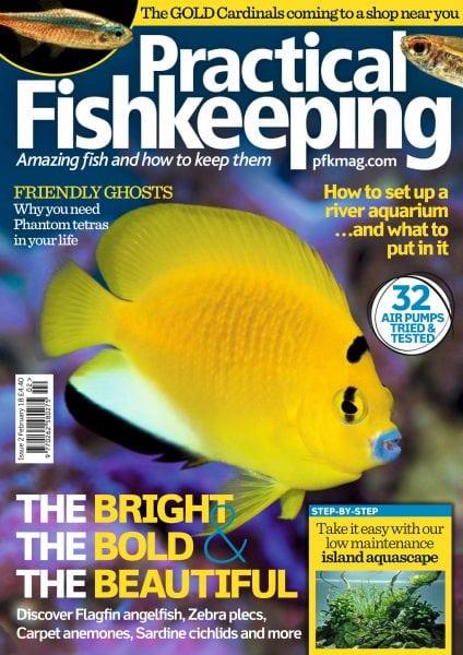 Download Practical Fishkeeping — February 2018