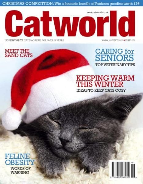 Download Cat World — anuary 2018