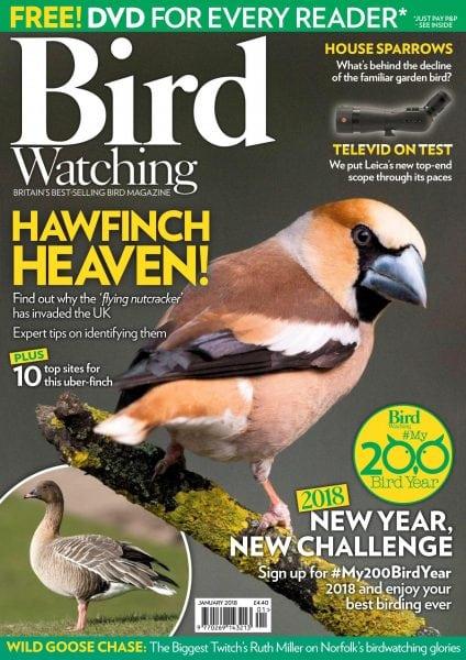 Download Bird Watching UK — January 2018