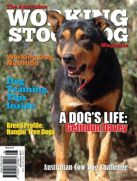 Download Australian Working Stock Dog Magazine — December 2017