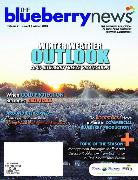 Download The Blueberry News — January 2018