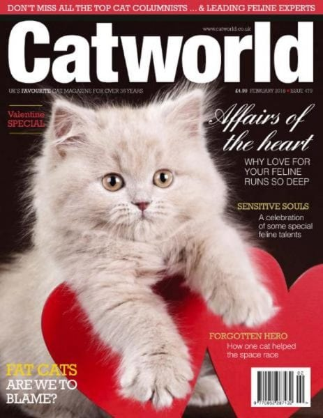 Download Cat World — February 2018