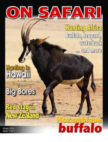 all safari magazine gujarati pdf free download