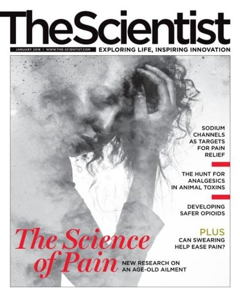 Download The Scientist — January 2018