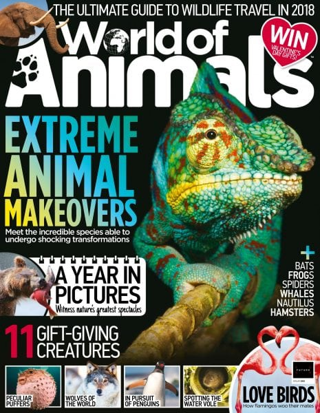 Download World of Animals UK — February 2018