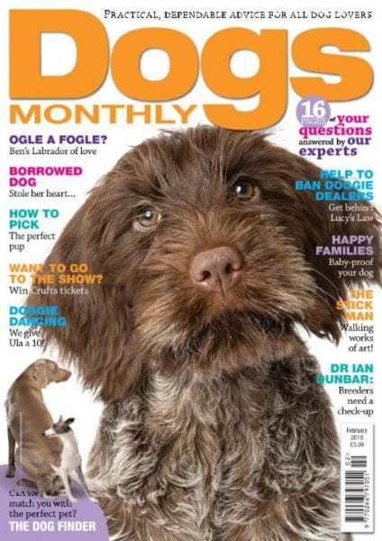 Download Dogs Monthly — February 2018