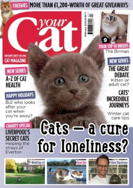Download Your Cat — February 2018