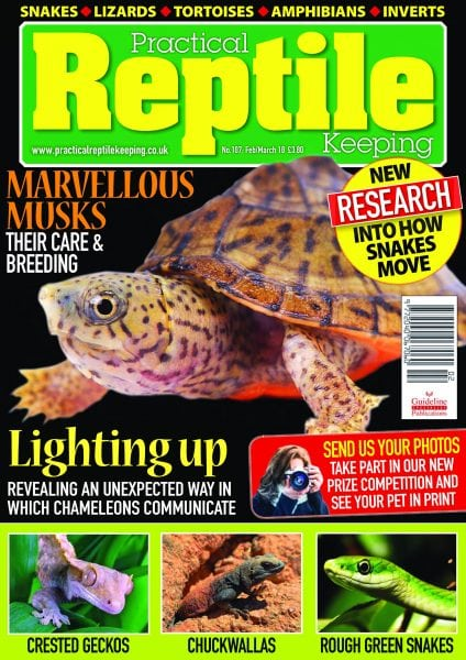 Download Practical Reptile Keeping — February 2018