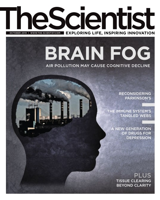 美国The Scientist 科学家 10月.2019封面