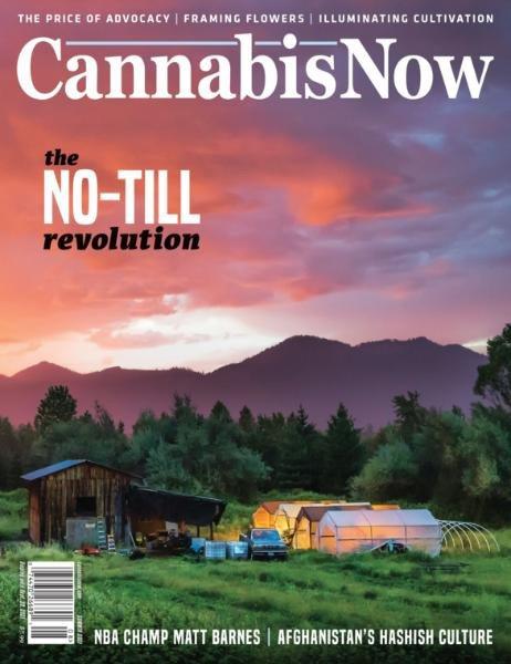 Cannabis Now – Issue 41 – Summer 2021