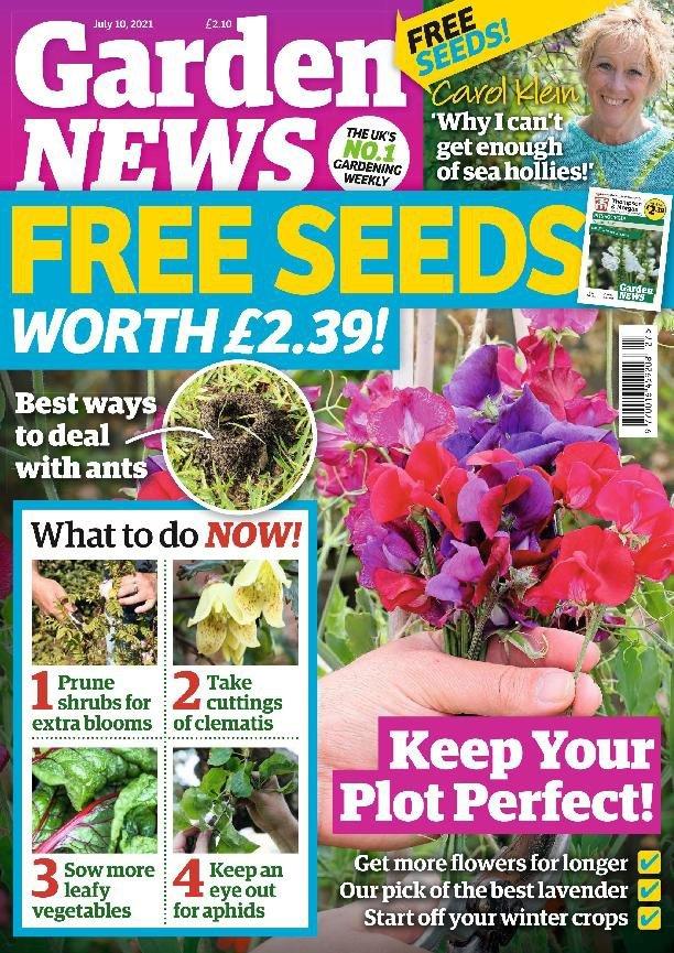 Garden News – 06 July 2021