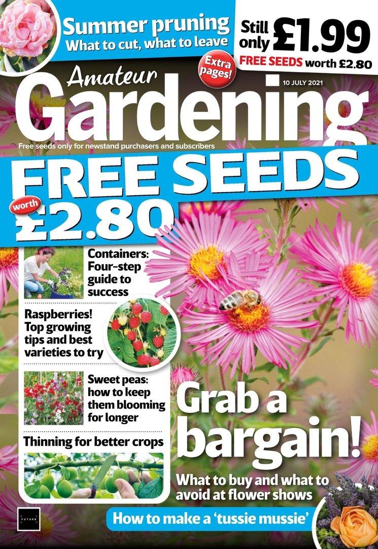 Amateur Gardening – 10 July 2021