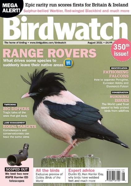 Birdwatch UK – August 2021
